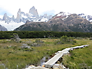 26 - On our way to Mount Fitz Roy, Glaciers National Park