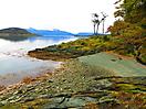 37 - Lapataia Bay, Tierra del Fuego National Park