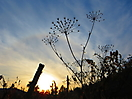 20 - Sunset in Pelequen