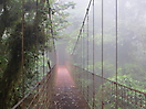 9 - Hanging Bridge, Monteverde Cloud Forest Reserve