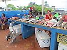 10 - Pelican in the Fish Market, Santa Cruz, Galapagos