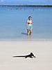 8 - Swimming with the Marine Iguanas, Santa Cruz, Galapagos