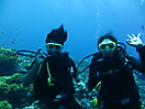 45 - Scuba Diving in the Red Sea, Dahab