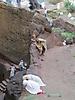 14 - Ethiopian Orthodox Christians Praying, Lalibela