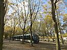 15 - Bordeaux Tram