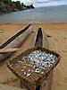13 - Fish and Canoe, Nkhata Bay