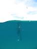 8 - Sal Learning to Free Dive, Likoma Island