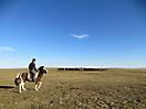 17 - Horse Riding in Kharkhorin 2