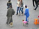 18 - Monkeys on a Leash in Djemaa el-Fna Plaza, Marrakesh