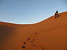 25 - Sandboarding in the Sahara