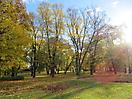6 - Frognerparken & Vigeland Park, Oslo