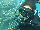13 - Gisela Diving, Zanzibar