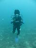 15 - Sal Diving, Zanzibar