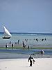 5 - Lowtide in Nungwi, Zanzibar