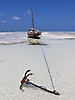 8 - Boat at Low Tide, Nungwi, Zanzibar