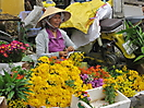 10 - Flowers of Hoi An