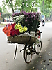28 - Flowers on the Streets of Hanoi